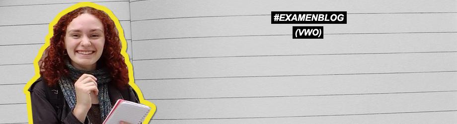 Lees Iris' #examenblogs...