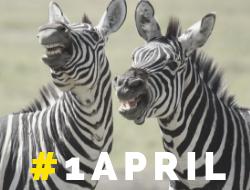 TKMST | 5 makkelijke 1 april grappen voor wanneer je het gat in je ziel graag opvult met ongein.