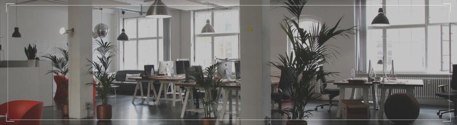 TKMST | Alles over de functie Brand manager